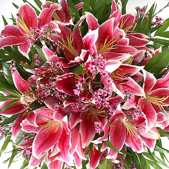 pink tiger lilies bouquet Fresh flower delivery, Fresh