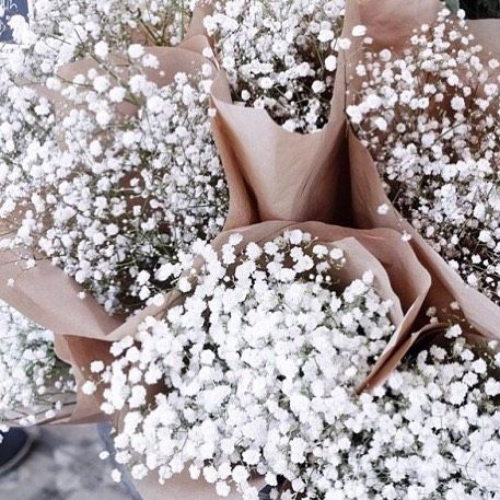 Morning Bellamummablooms The Joy Of J Lifestyle Blogger Fashion Blogger Floral Flower Design Pretty Flowe Beautiful Flowers White Flowers Pretty Flowers