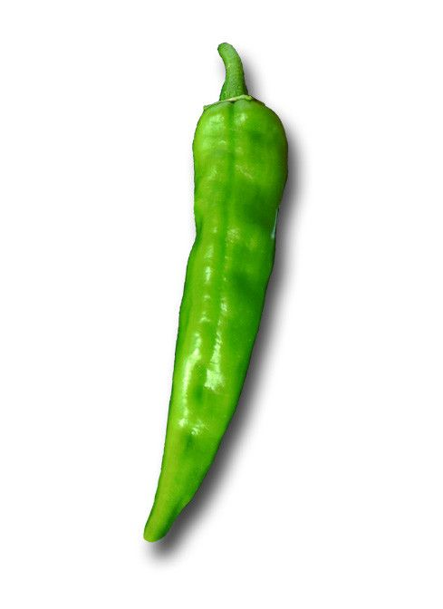 The classic Anaheim pepper, the granddaddy of all future ...