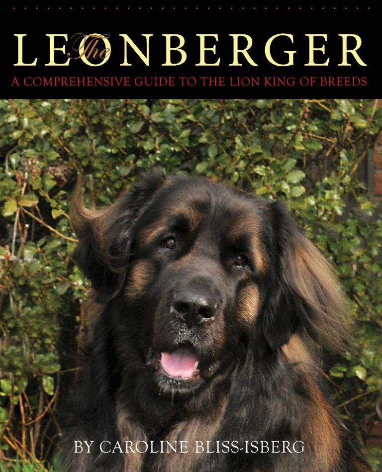 The Leonberger A Comprehensive Guide To The Lion King Of Breeds