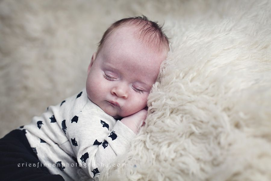 4b45d3843269 9 week old sleeping in galion ohio photography studio