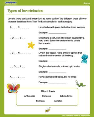 Types Of Invertebrates Free Science Worksheet For 4th Grade