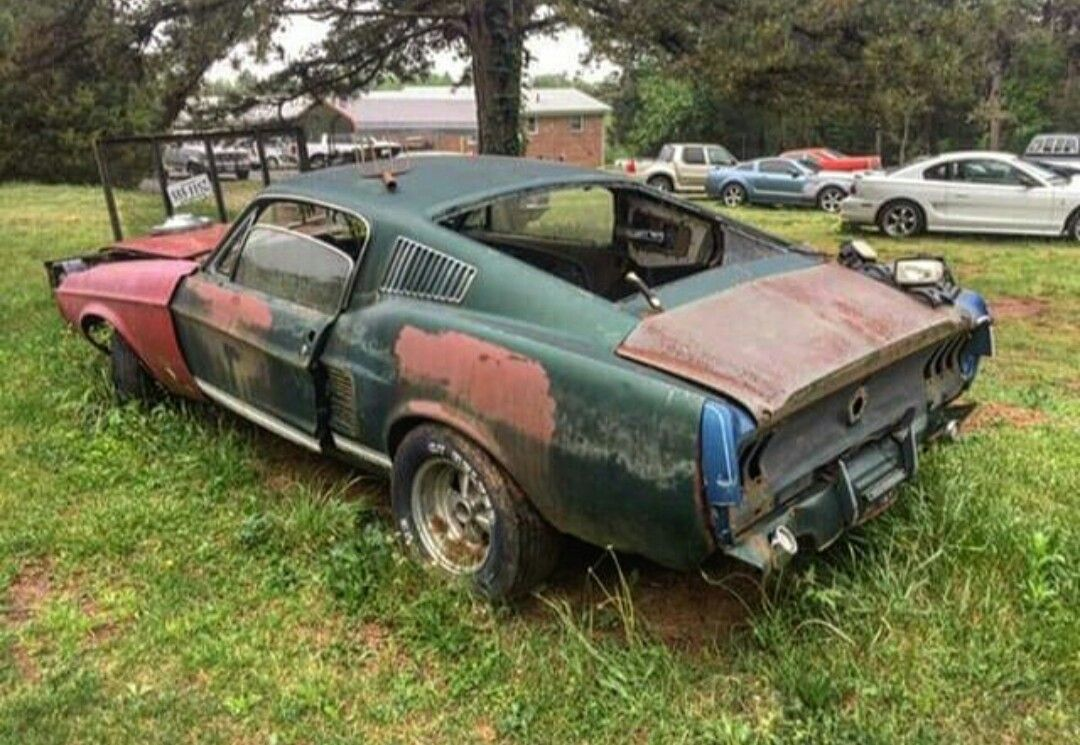 Mustang Abandoned Cars Barn Find Cars Ford Mustang Cobra