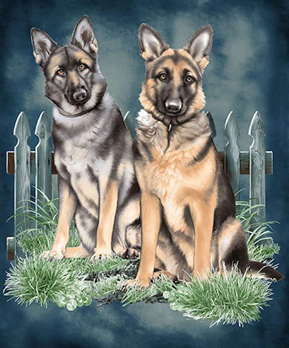 German Shepherds Dog JQ Signature Plush Queen