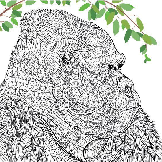 Oostelijke gorilla | Richard Merrit & Clare Scully, menagerie ...