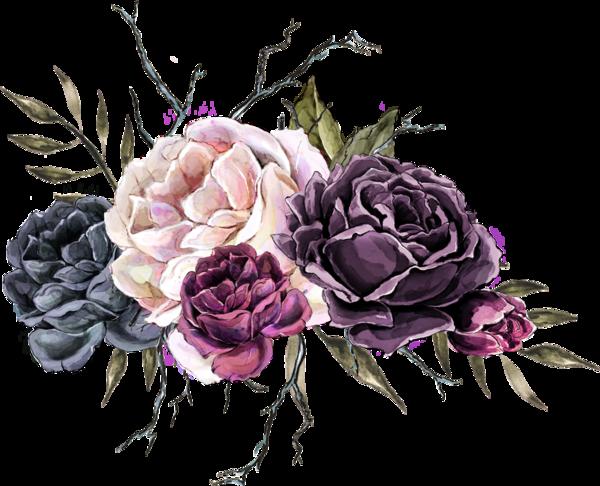 Roses Pink Roze Rosa Fleur Flower Background Wallpaper Flower Backgrounds Floral