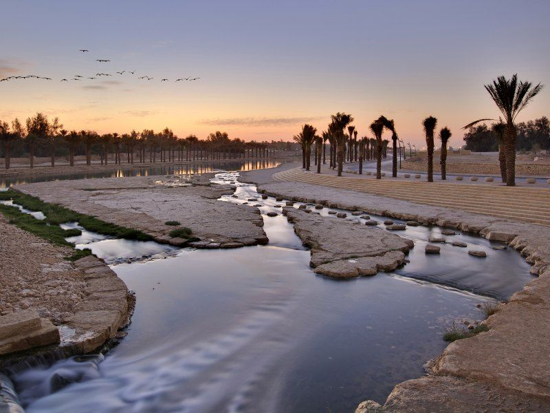 Aga Khan Award Wadi Hanifa Wetlands Landscape Riyadh Urban Park