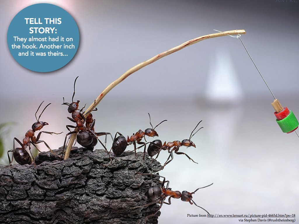Writing Prompt Fishing Ants With Images