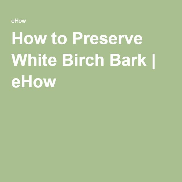 How To Preserve White Birch Bark Ehow Decor Decorations