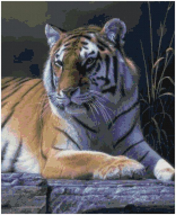 Hey, I found this really awesome Etsy listing at https://www.etsy.com/listing/193966363/cross-stitch-pattern-bengal-tiger-pdf