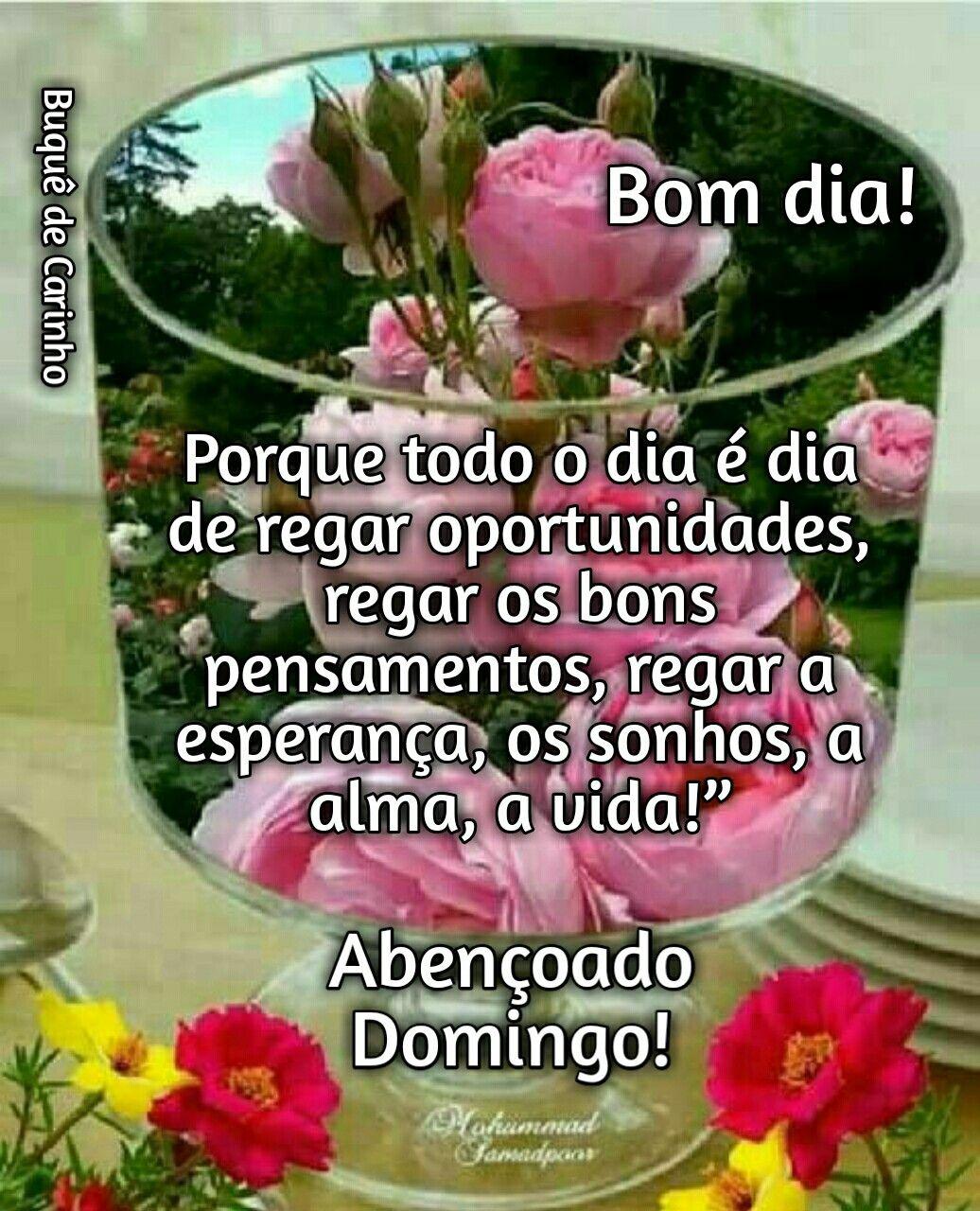 Pin De Lidia Oliveira Em Bom Dia Mensagens De Bom Dia Mensagens