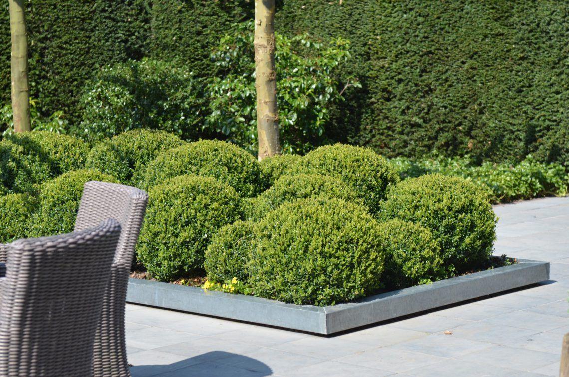 Groenseizoen tuinen ontwerpstudio groenseizoen tuinen