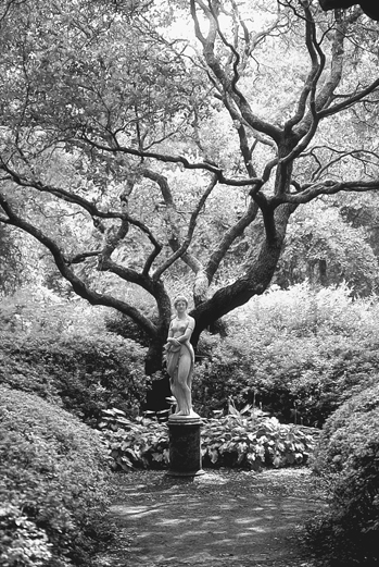 Gardens By Maria: The Virginia Dare Statue By Maria Louisa Lander In The