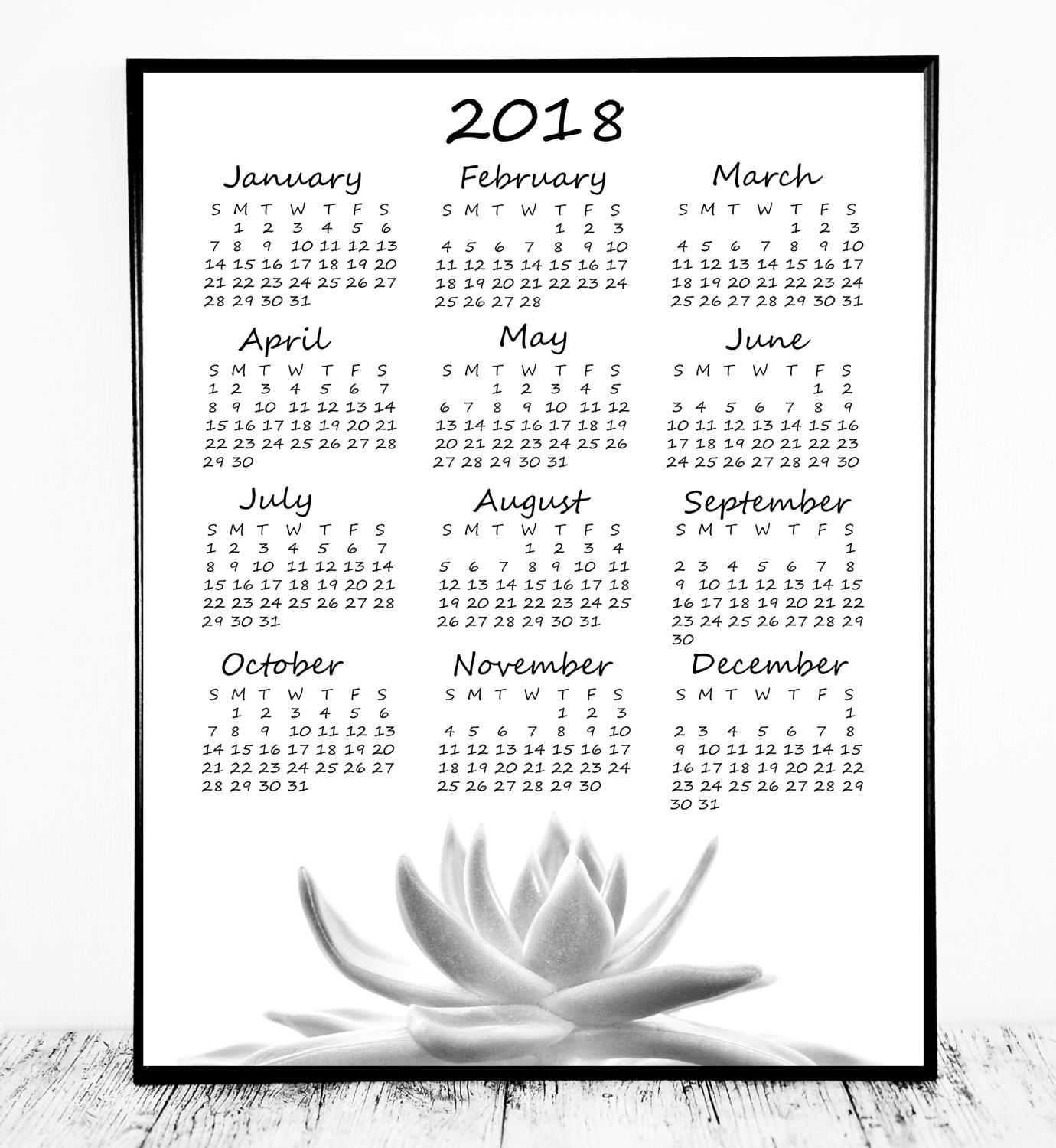 beautiful year at a glance calendar 2018 printable with succulent photo print large as a wall calendar or small and use as a desk calendar