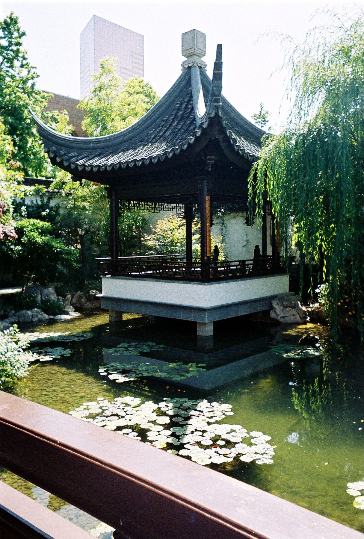 Pagoda and Skyscraper, Portland's Lan Su Chinese Garden