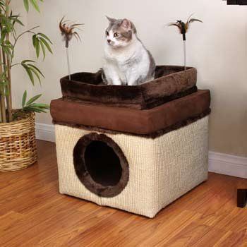 Petco Deluxe Convertible Ottoman Cat Condo by Petco, http://www.amazon.com/dp/B006K0FT5K/ref=cm_sw_r_pi_dp_HCOwrb1VH26XP