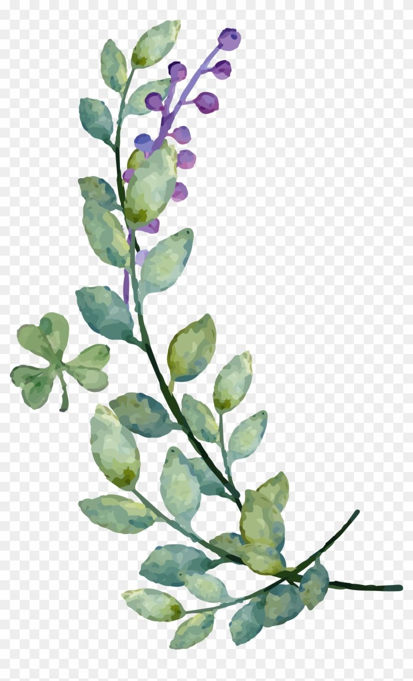 Find Hd Watercolor Leaves Png Image Watercolor Leaf Vector Png Transparent Png To Search And Downl Flores Vectorizadas Flor Ilustracion Imagenes Abstractas