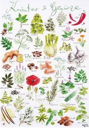Poster mit Illustration von Andreas Hirsch   Outdoors   Pinterest ...
