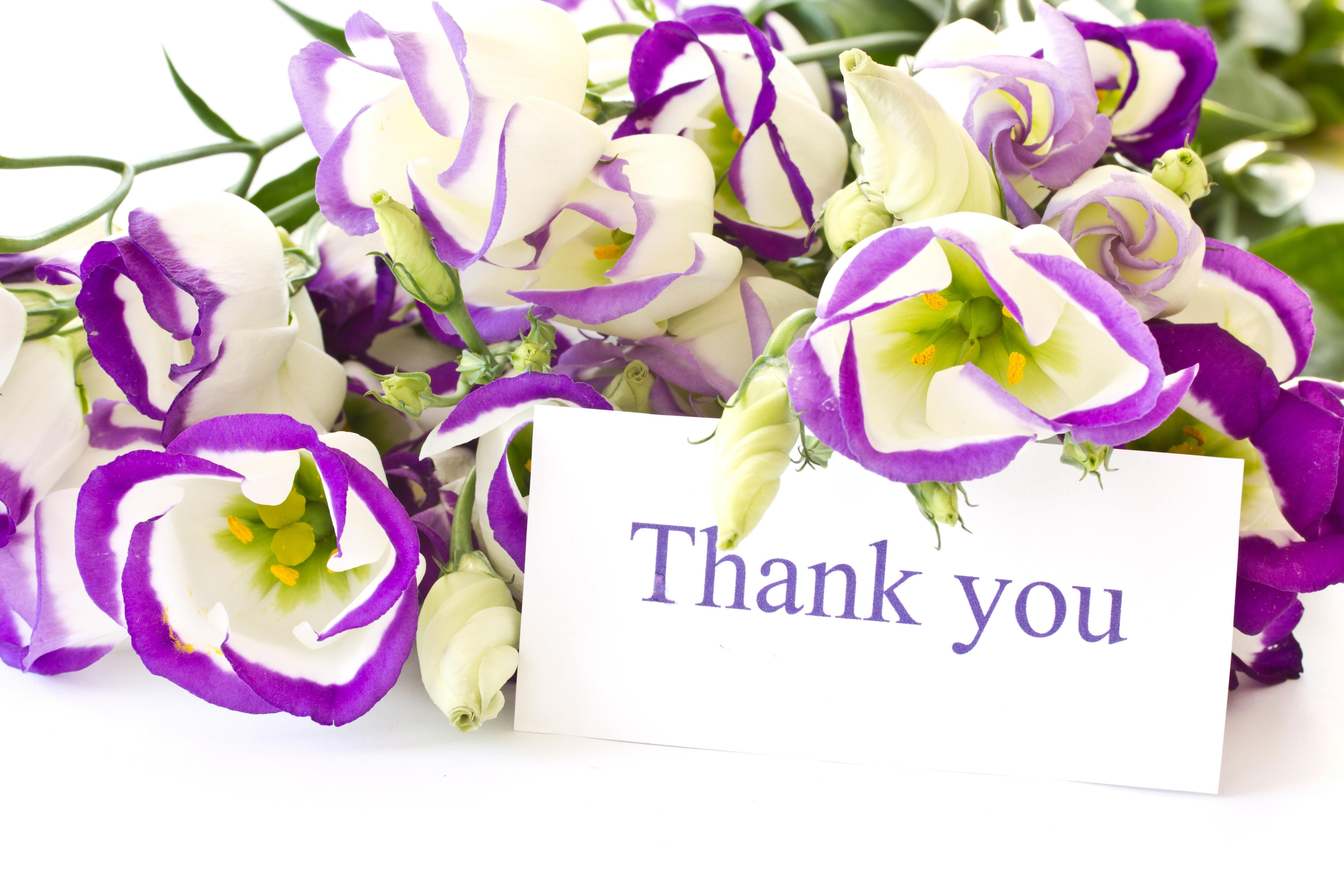 Images of thank you flowers wallpaper picture with hd