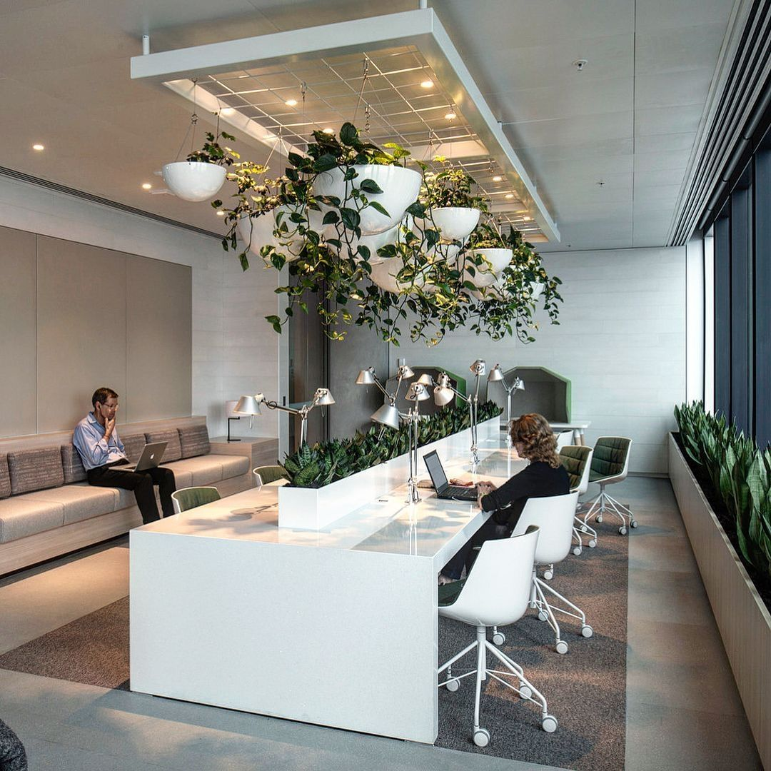 40 Relaxing Green Office Decor Ideas Zyhomy Office Interior Design Green Office Decor Office Design