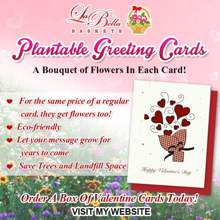 Plantable greeting cards myenchantedgiftsbellabaskets plantable greeting cards myenchantedgiftsbellabaskets herbs wildflowers or vegetables m4hsunfo