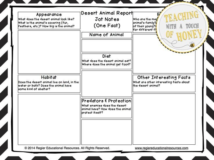 Informative Writing Templates   Desert Animal Report
