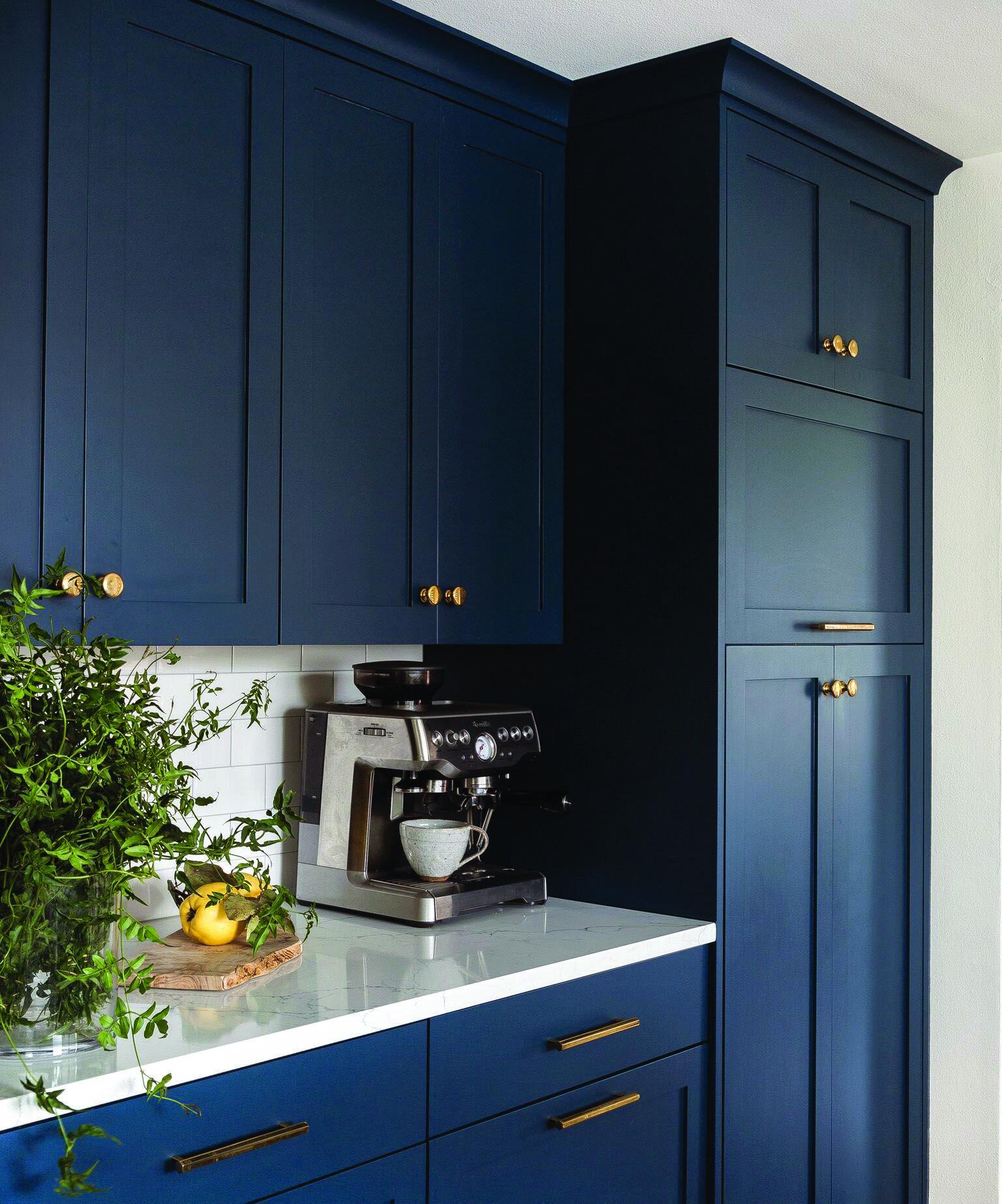 The Most Popular Kitchen Storage Ideas On Houzz Homes Tre Kitchen Renovation Kitchen Interior Kitchen Design