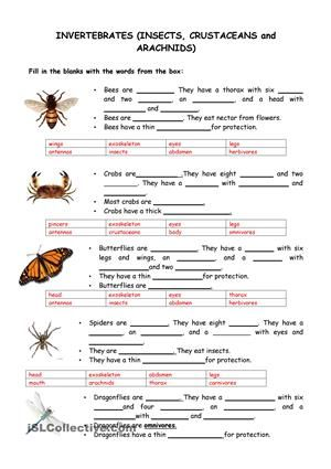 i hope you find it useful esl worksheets science year 6 pinterest worksheets teaching. Black Bedroom Furniture Sets. Home Design Ideas