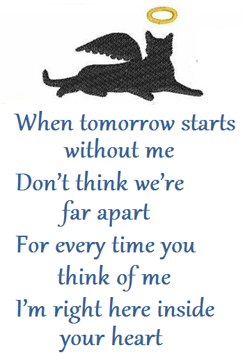 Dog Death Quotes Cat Condolence Poems  Death Poems Pet Loss Sympathyo  Pinterest .