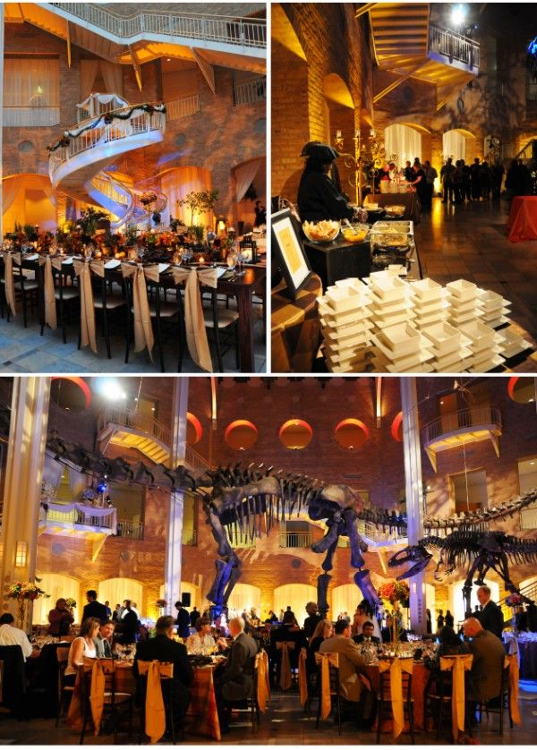 If Only Fernbank Museum Is The Perfect Setting For An Unimaginable Wedding Museum Wedding Atlanta Wedding Event Venues
