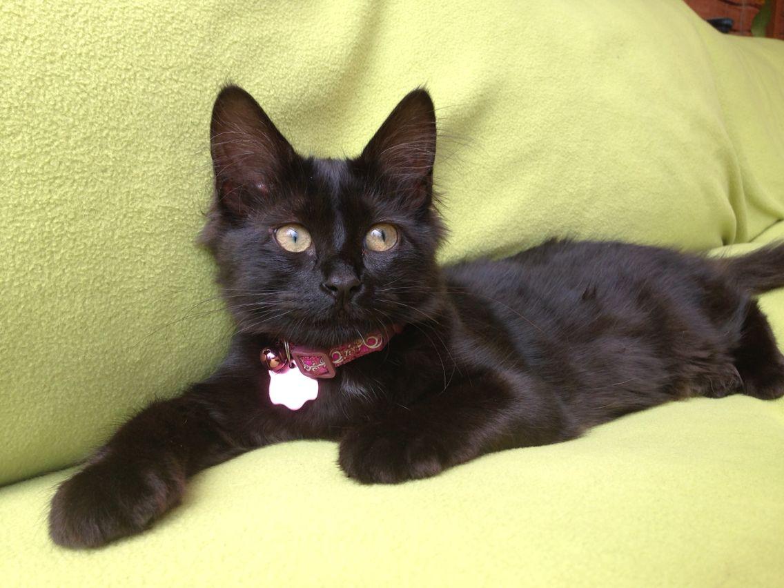 Sarita, 4 meses