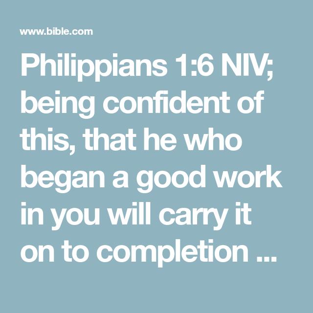 NIV Bible Life Application Study Bible Faux Leather