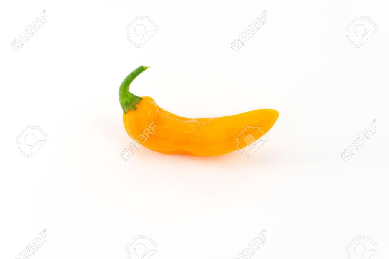 32176227-Aj-amarillo-peruano-Foto-de-archivo.jpg (1300×867)