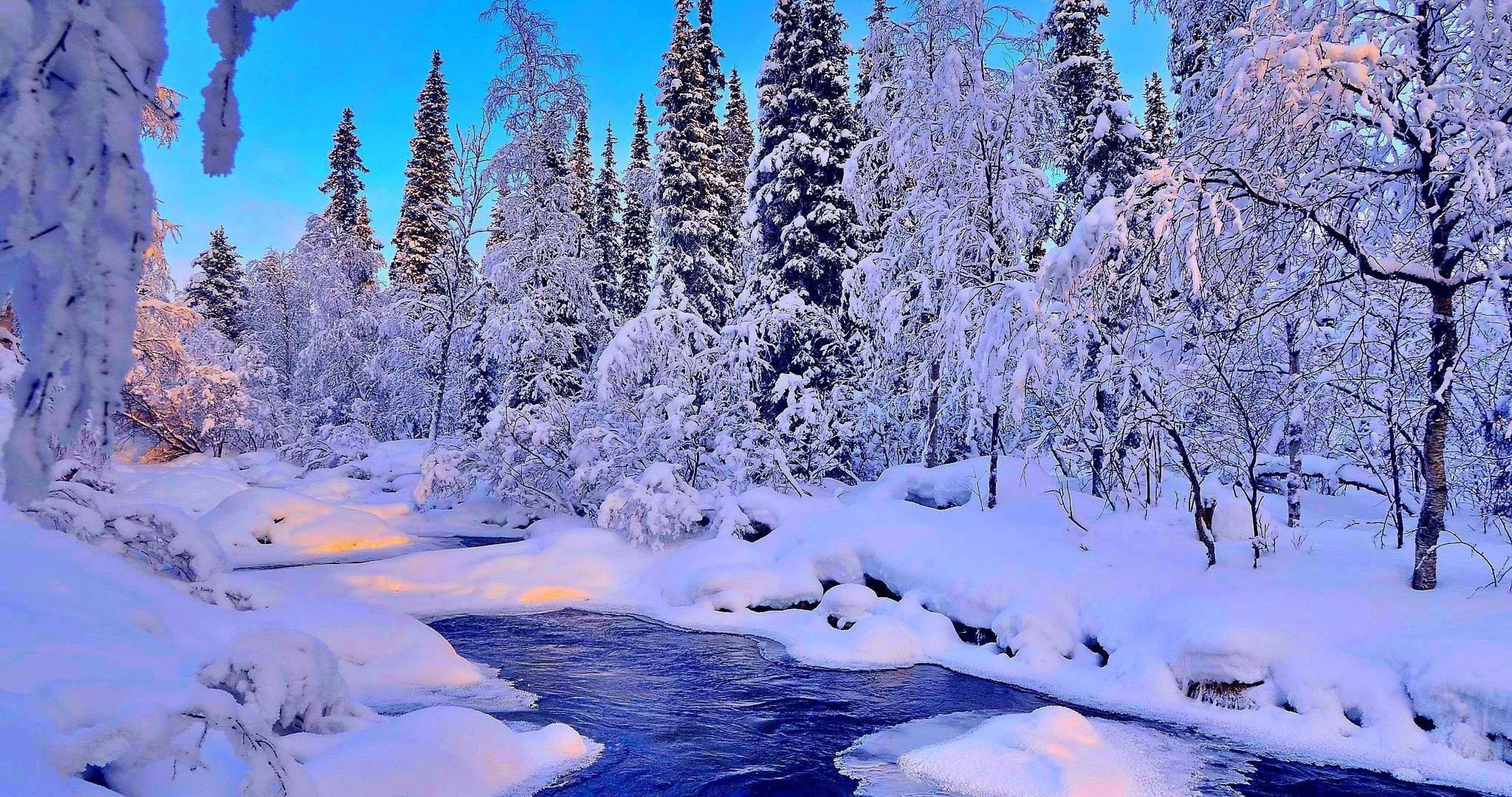 river in winter 4k ultra hd wallpaper ololoshenka Tree