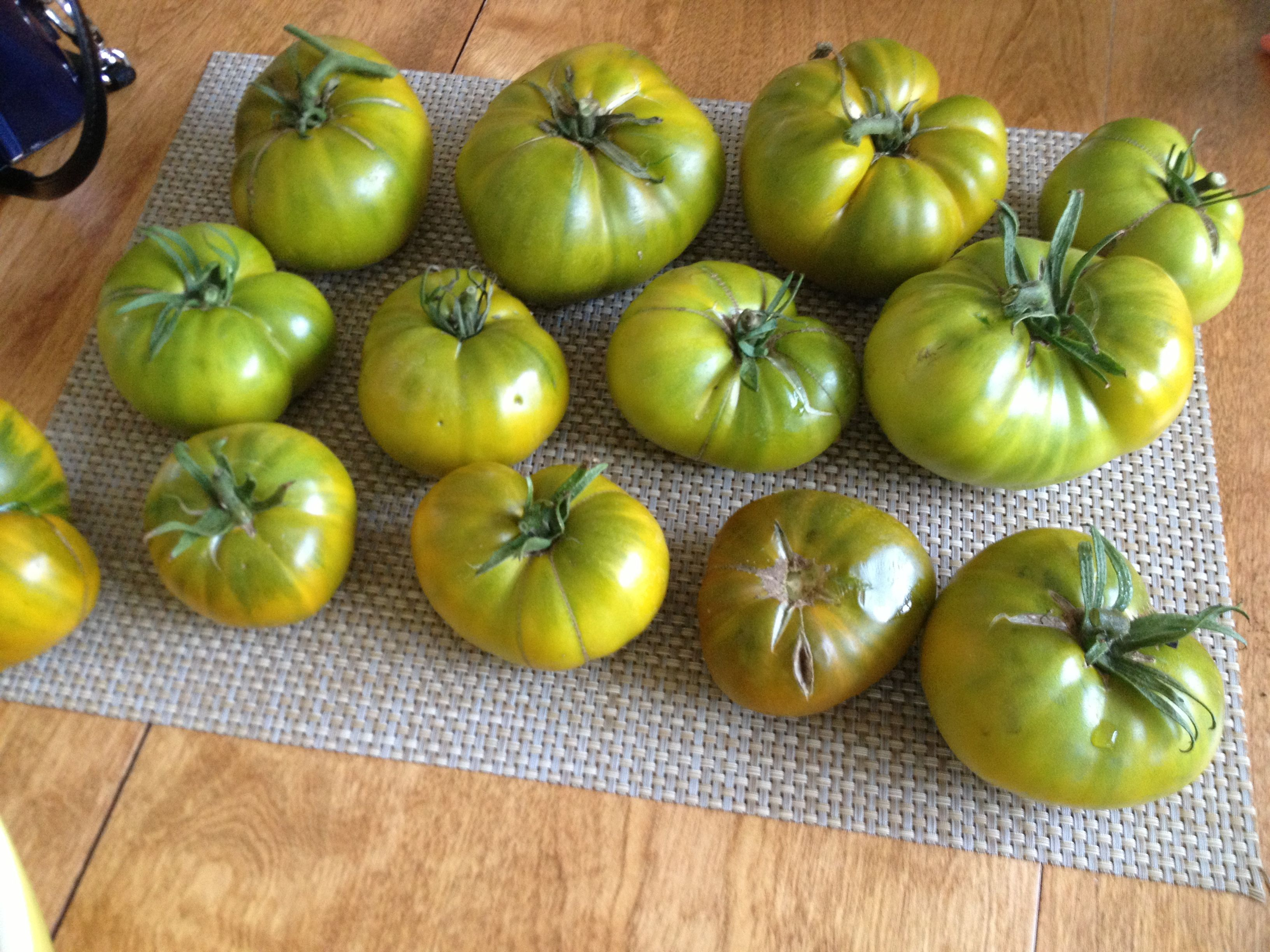 Park Art|My WordPress Blog_Where Can I Buy Green Tomatoes In Stores
