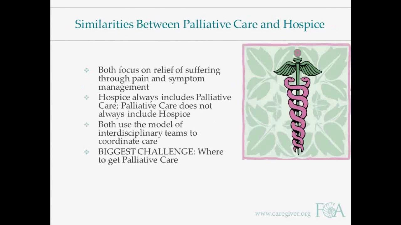Palliative Care 101 webinar from Family Caregiver