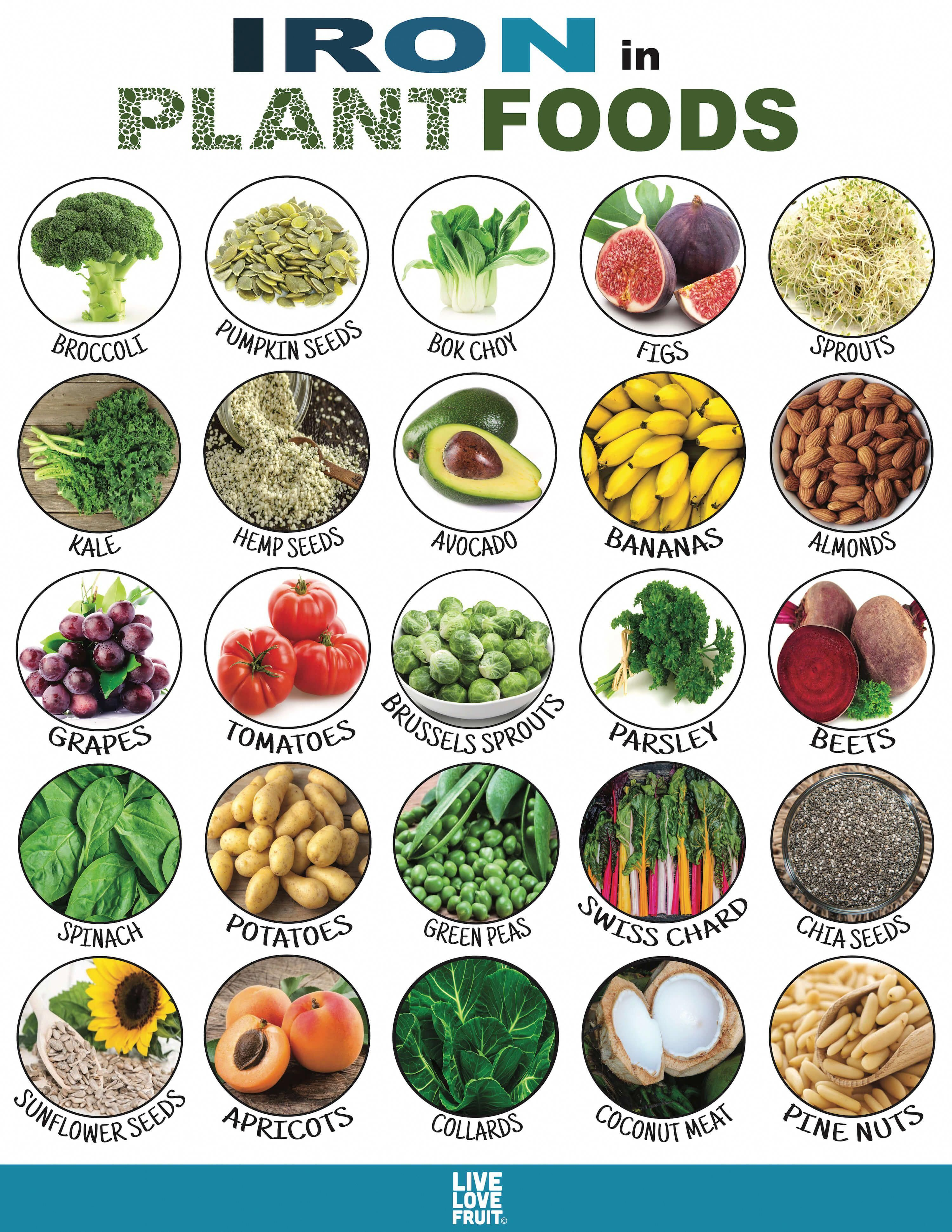 You Can Live Without Meat You can get all the vitamins