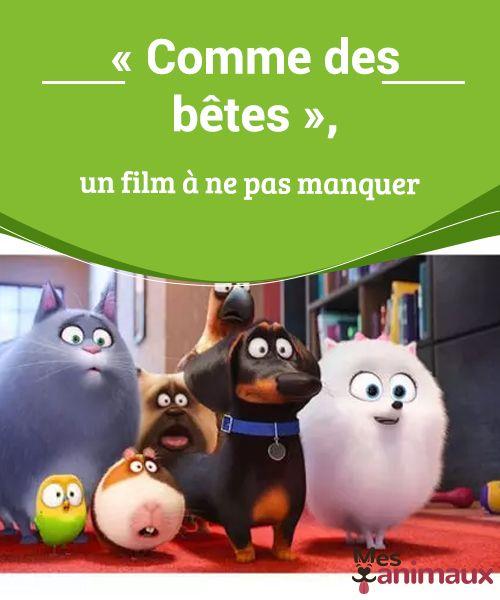 Comme Des Betes Bande Annonce Comme Des Betes Un Film A Ne Pas Manquer Comme Des Betes Film