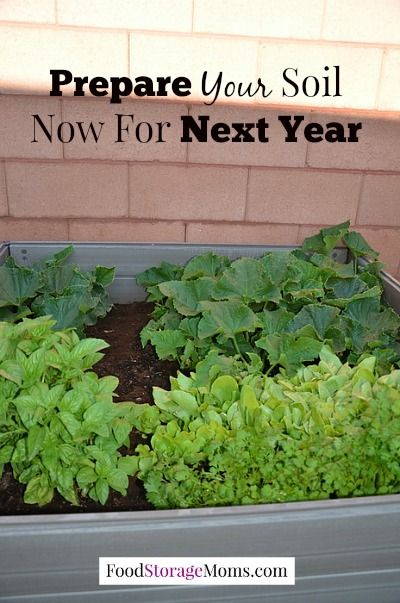 How to prepare your garden so you are ready for planting - Prepare vegetable garden for winter ...