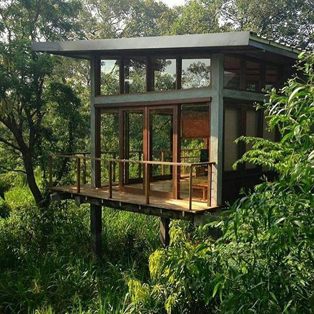 A Cabin In The Forest Grab My Beanbag Because That Balcony Needs Sitting On Cabin By Geoffrey Bawa Arc Tree House Plans Tree House Diy Tree House Designs