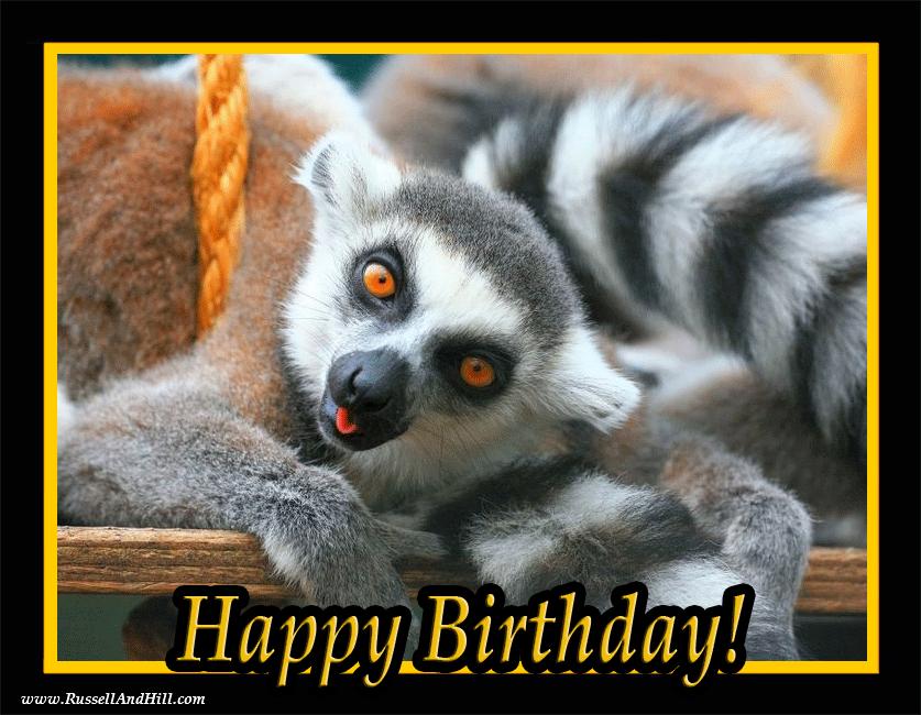 Pin Von Nicole Glässner Auf Happy Birthday Pinterest Animals