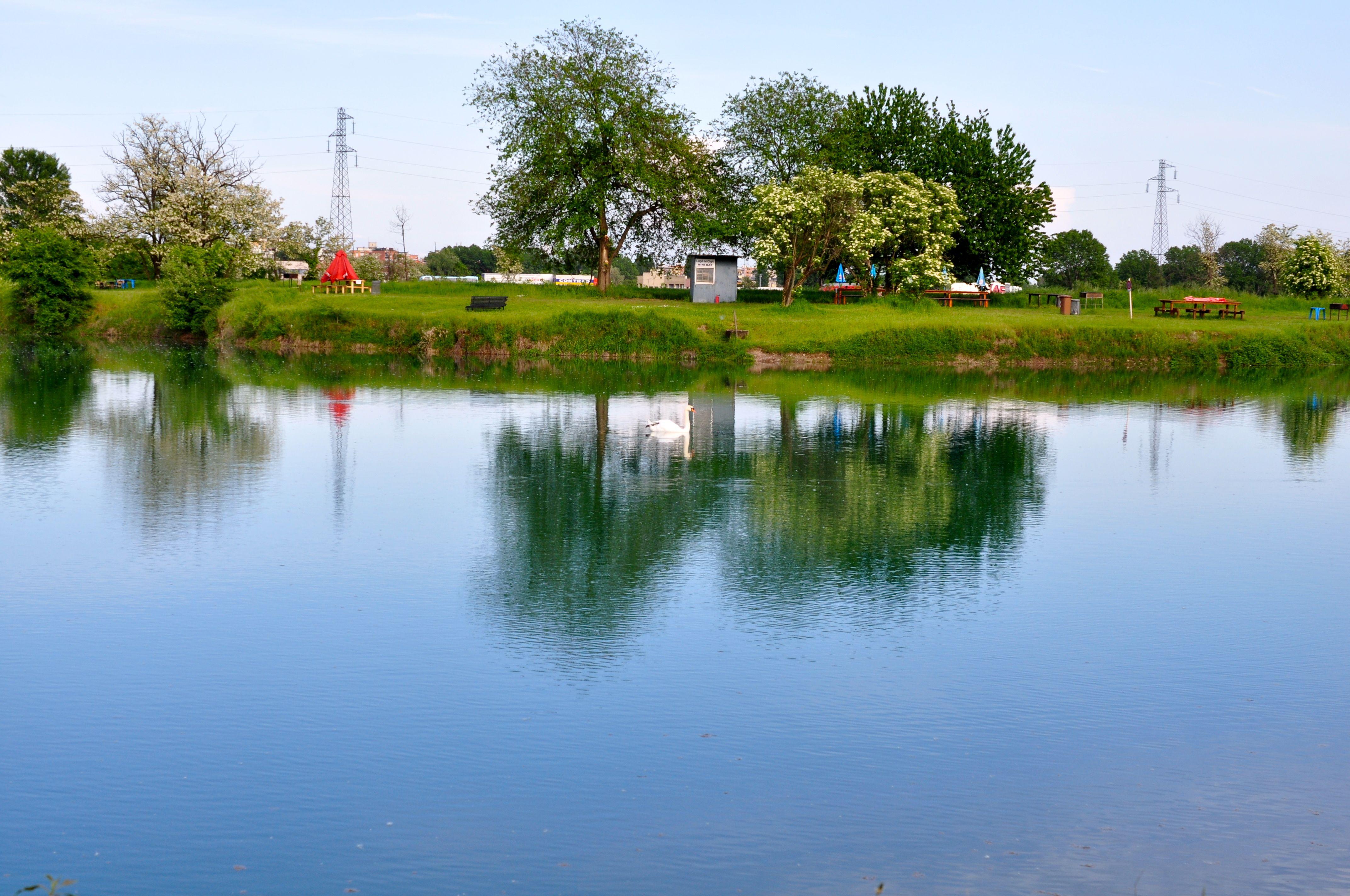 Il lago dei cigni a Milano