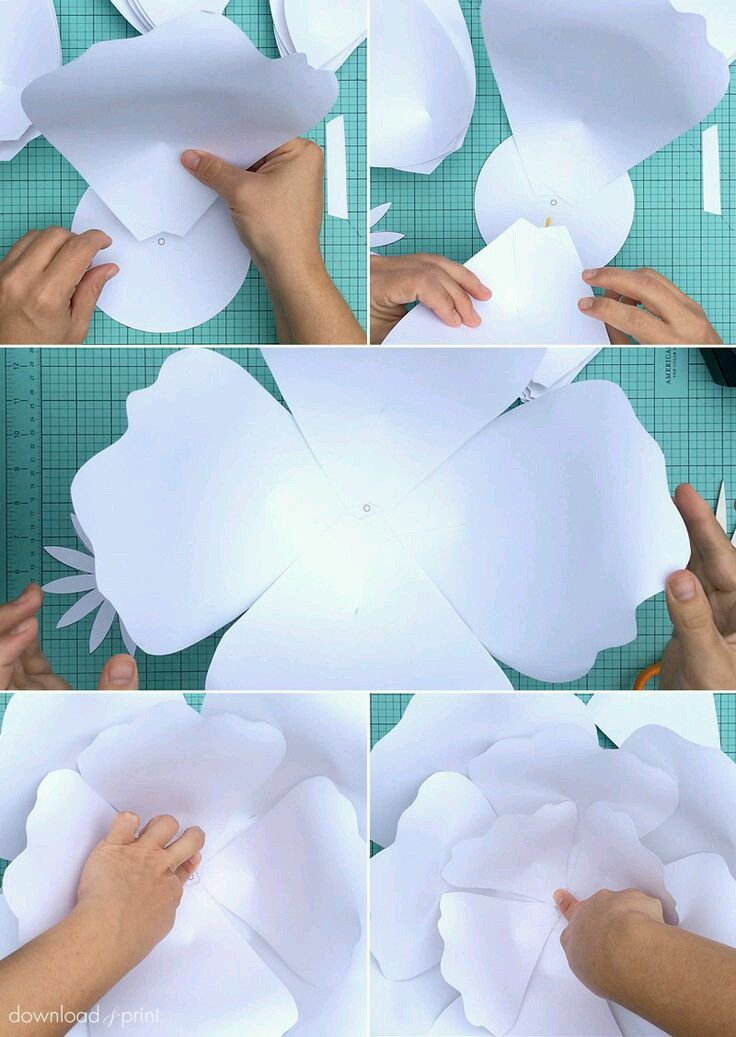 Pin by veronica limas estrada on paper flowers pinterest flowers let me show you how to create easy ginormous paper roses with just card stock and tape these look fabulous as a wedding photo backdrop centerpieces mightylinksfo