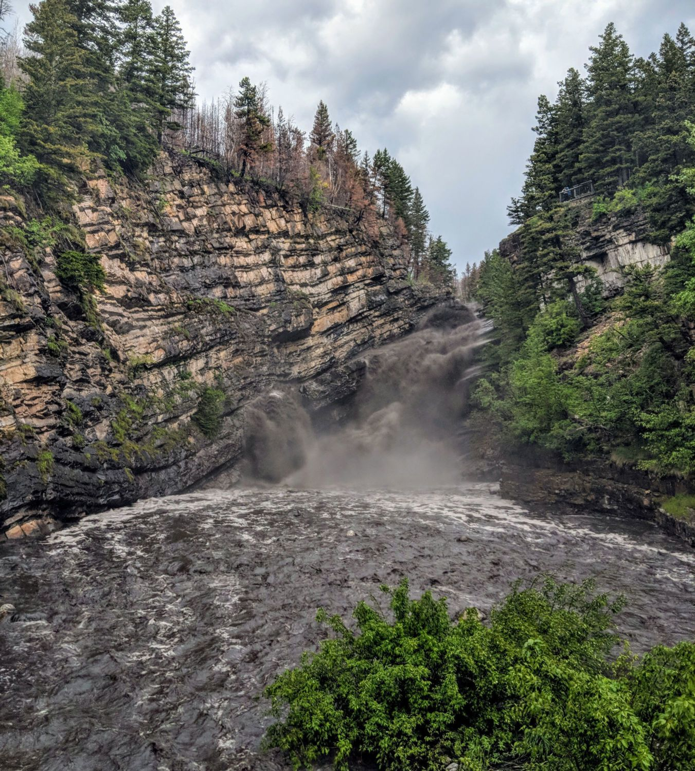 Cameron Falls runs black with soot and charred debris on June 21 one year  after a fire burned … | Waterton lakes national park, Parks canada,  Landscape photography