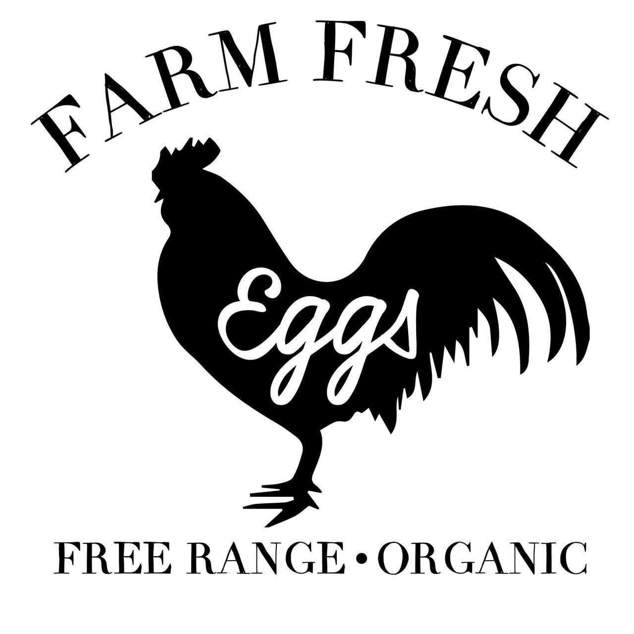 Free Farm Fresh Eggs Svg Cut File