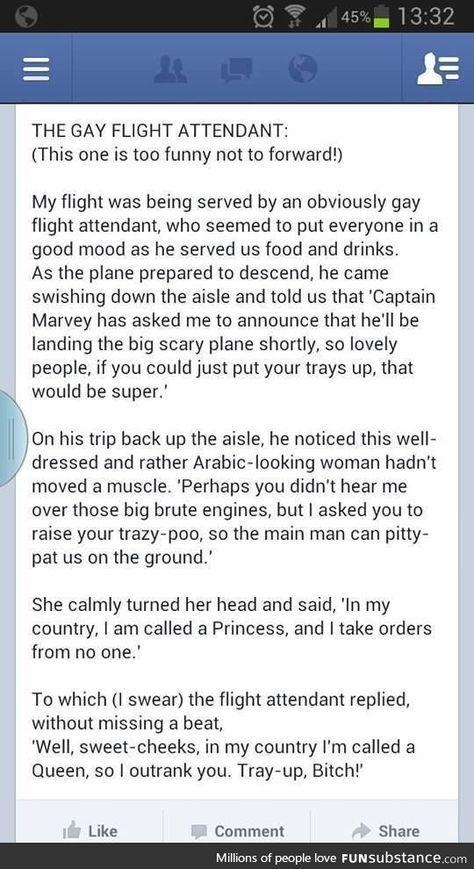 Gay flight attendant joke