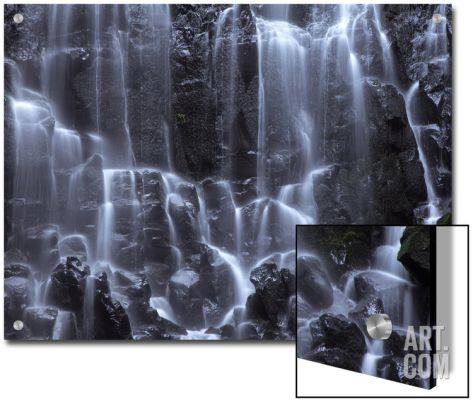 Ramona Falls Detail, Oregon Cascades Art on Acrylic by Vincent James at Art.com
