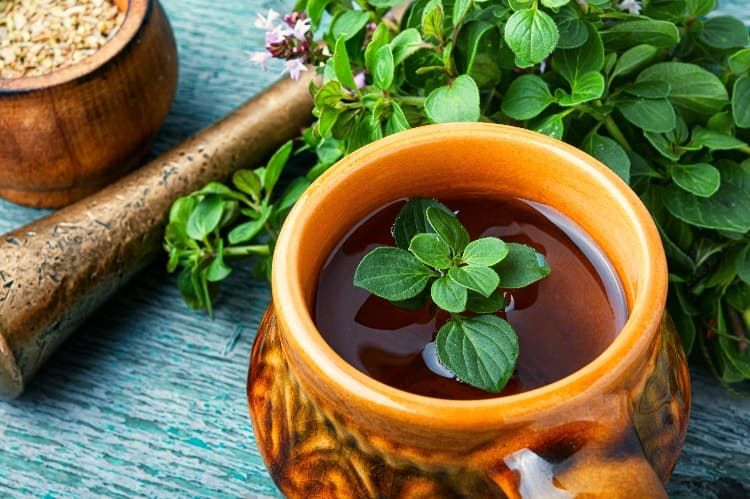 متى اشرب البردقوش لتنشيط المبايض موسوعة طيوف Clean Eating Diet Detox Recipes Russian Salad Recipe