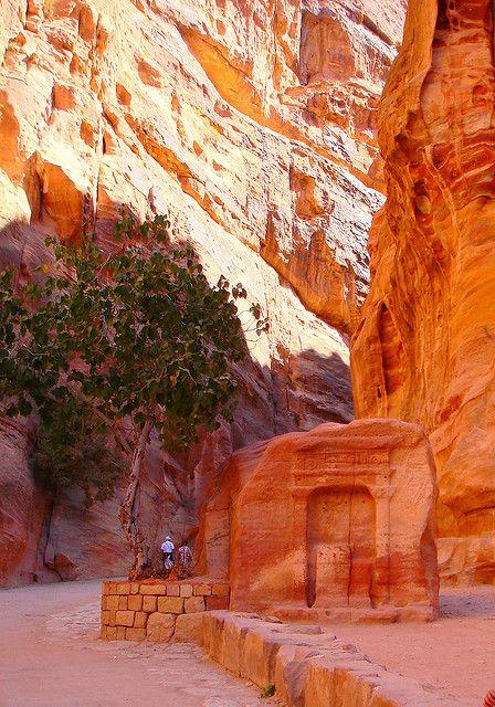 The Rose-Pink City of Petra, Jordan #petrajordan
