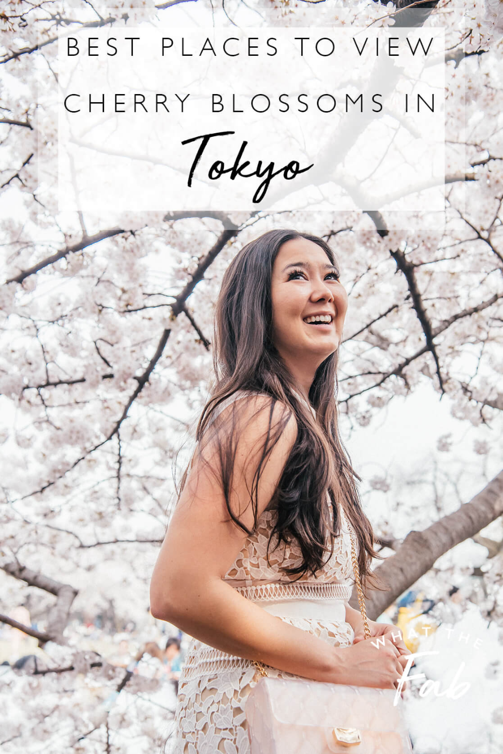 Best Places To View Cherry Blossoms In Tokyo 2021 Japan Travel Destinations Japan Travel Guide Tokyo Japan Travel